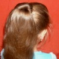 прическа с заколкой для волос софиста твиста