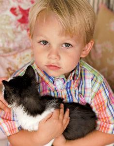 аллергия на кошек у детей