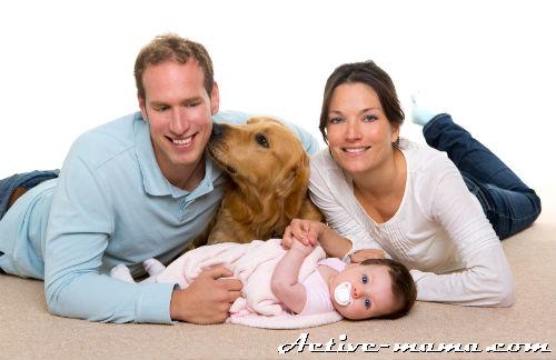 Собака и грудной ребенок