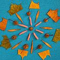 аппликации из сухих осенних листьев