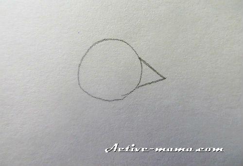 kak-narisovat-petuxa-3