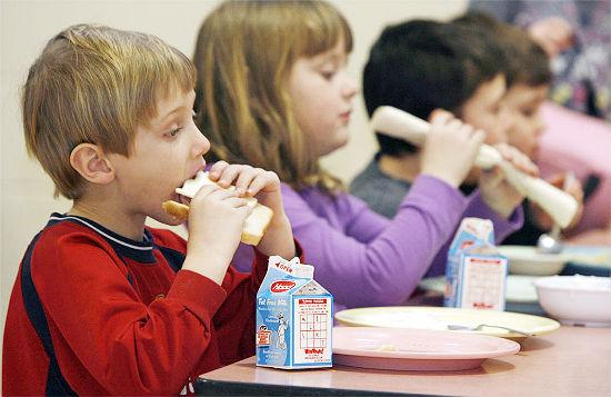 Заявление на предоставление бесплатного питания в школе